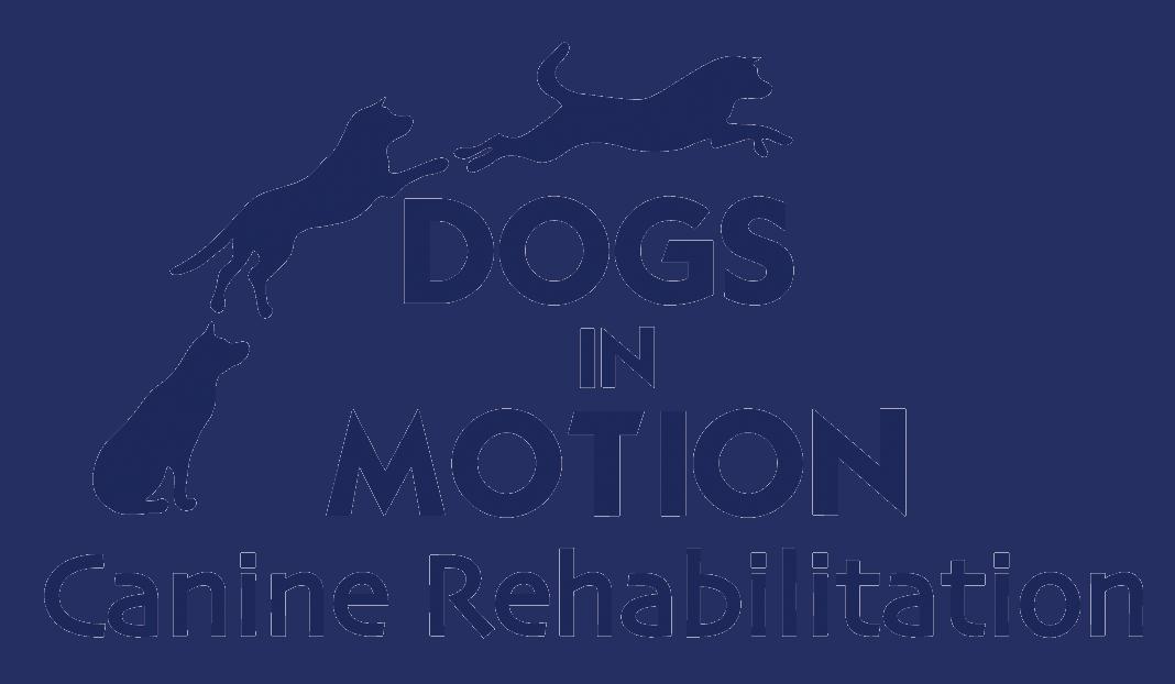 Dogsinmotion Logo Large